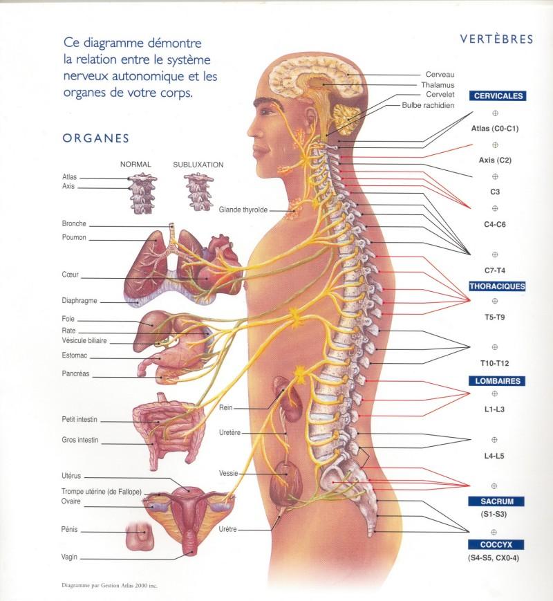 Centre Chiropractique Des Sources